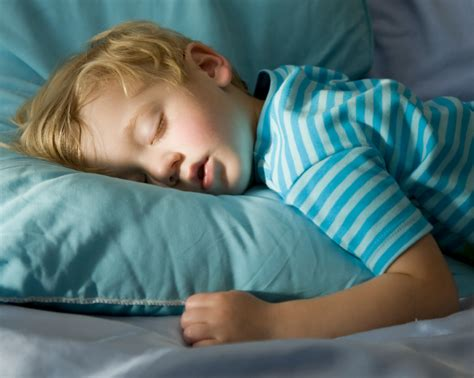 how to become a bed tester newborn and baby sleep schedule kids sleeping patterns