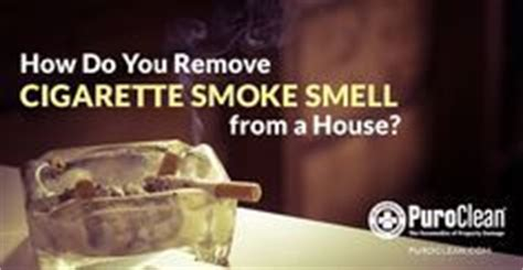 remove smoke smell from couch 1000 images about smoke smells on pinterest cigarette