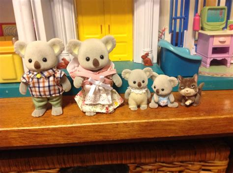 Calico Closet by 17 Best Images About Calico Critters On