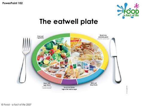healthy plate template powerpoint healthy