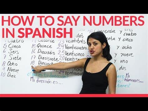 how to say couch in spanish 14 best spanish numbers images on pinterest learning