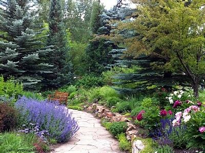 Betty Ford Alpine Gardens by Pin By Susan Shubert On Mountains