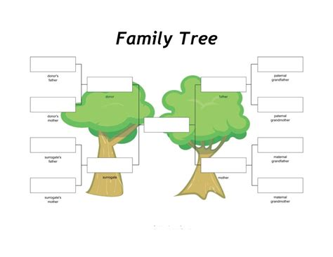 building a family tree free template 40 free family tree templates word excel pdf