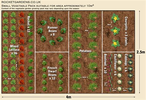 How To Grow Your Own Food For Increased Security Health Garden Plot Layout
