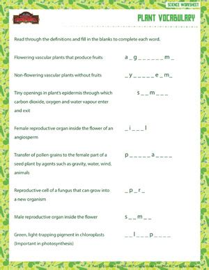why are plants green worksheet 7 2 plant vocabulary free sixth grade science worksheet school of dragons