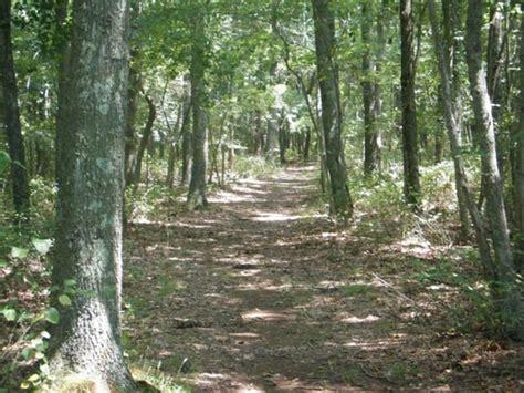 walking trails near me walking trail near me