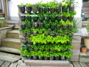 Soda Bottle Garden » Home Design 2017
