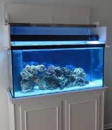 Fish Tank With Canopy by 75 Gallon Aquarium Canopy Aquariums Ready To Ship Gt 75