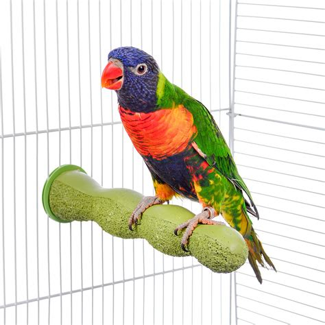 living world pedi perch bird perches self grooming perch