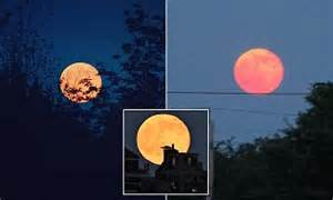 once in a generation strawberry moon tonight newport buzz home daily mail online