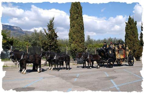 carrozze con cavalli carrozze con cavalli