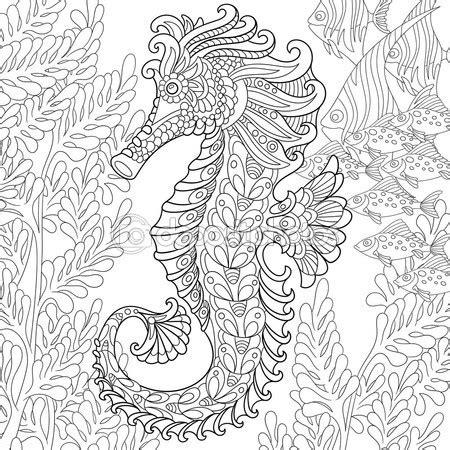 advanced fish coloring pages zentangle estilizado caballito de mar vector de stock