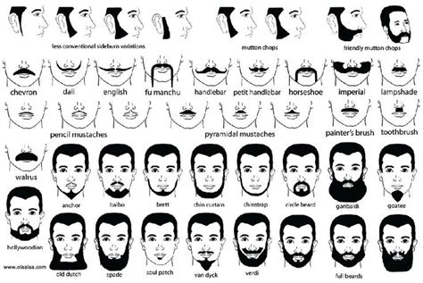types of hair for types of faces shapes types of beards and goatees mustache and beard styles