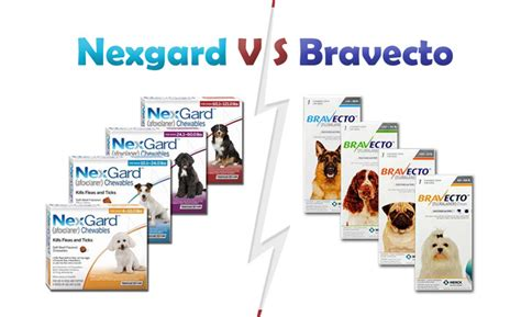 nexgard deaths nexgard v s bravecto which one to choose