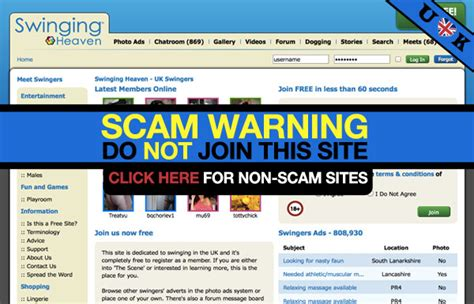 swinging csites swing websites 28 images forex trading advertisement