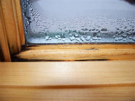 what causes condensation on inside of house windows integrity hastings view