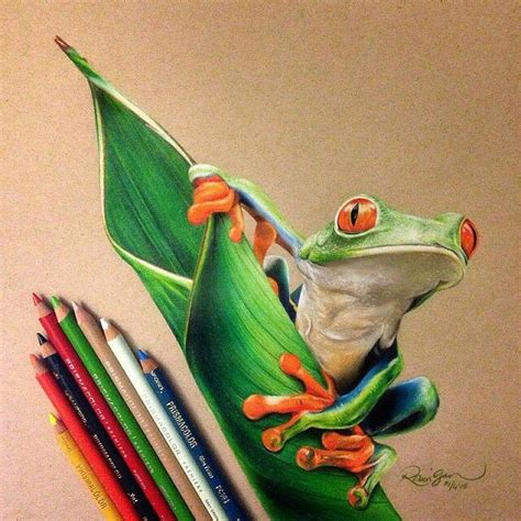 colored pencil drawings 25 best ideas about colour pencil drawing on