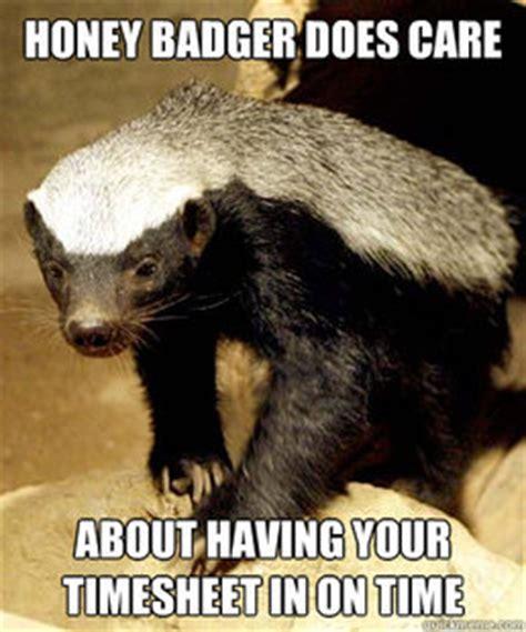 Honey Badger Meme Generator - memes quickmeme