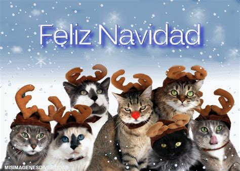 imagenes de feliz navidad con gatitos feliz quot navidad quot de tod s para tod s todo sobre la web