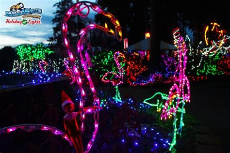wildwabes christmas reminder waves with lights 50 admission on 12 12 with donation