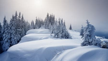 firefox themes snow top of the mountain winter nature background