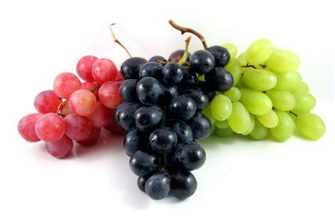 imagenes las uvas la uva aporta grandes beneficios para la salud cardiovascular