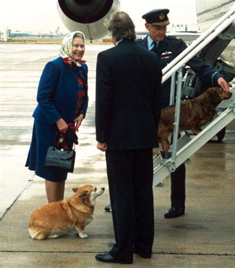 queen elizabeth ii corgis the 25 best queen news ideas on pinterest elizabeth day