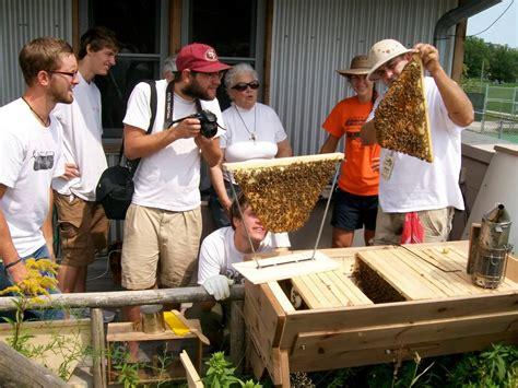 top bar beekeeping videos top bar beekeeping top bar hives beepods beekeeping kits