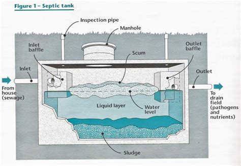 Home Design Contents Restoration septic tank maintenance septic tank pumping septic
