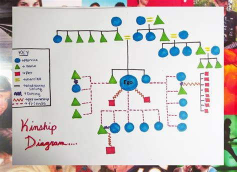 kinship chart maker a tabula rasa kinship diagram
