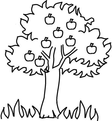 Apple Tree Coloring Pages the thick apple tree coloring for tree coloring