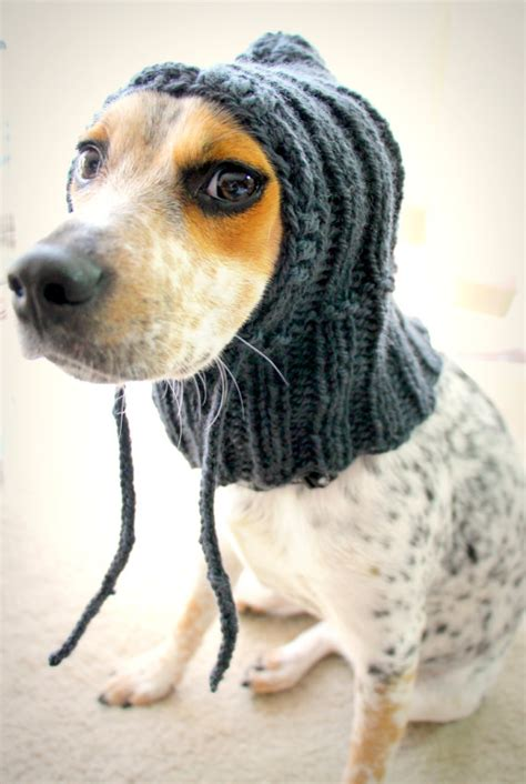how to knit a puppy custom knit hat hoodie pet scarf pet clothes