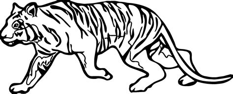tiger woods coloring page walk woods coloring page coloring pages