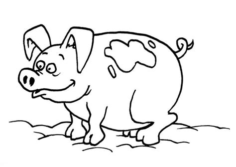 coloring page of a pig printable animal pig coloring pages for