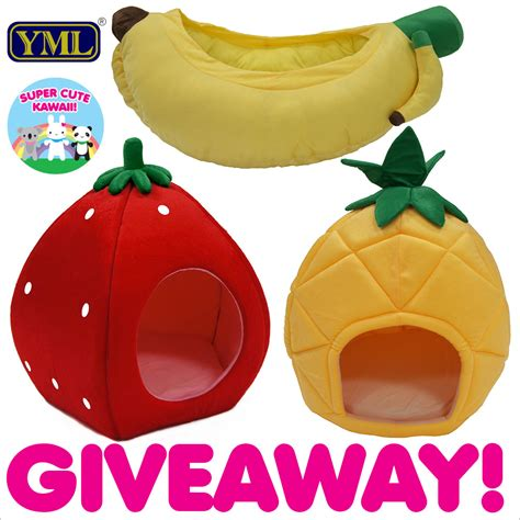 Pet Giveaways - yml group fruity pet bed giveaway us only super cute kawaii