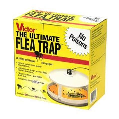 Raid All Aromatherapy Cat Shoo So Kucing victor ultimate flea trap m230 the home depot