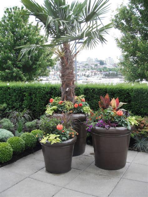 A Modern Tropical Patio Garden Tropical Landscape Tropical Patio Plants