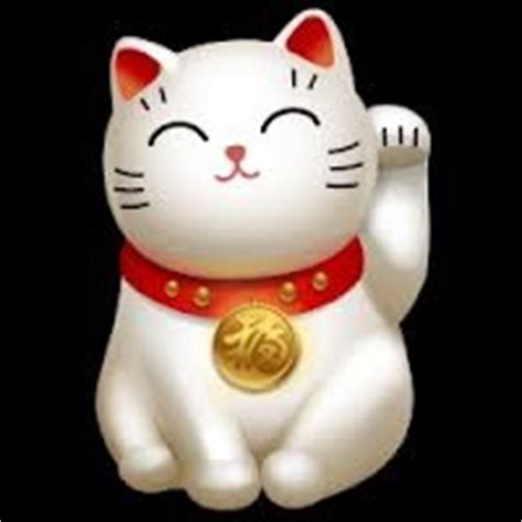 8 best images about chinese lucky cat on pinterest
