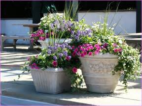 big flower pots and how to plan for the plants to plant in them interior design ideas
