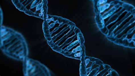 master di ii livello in statistica medica e genomica