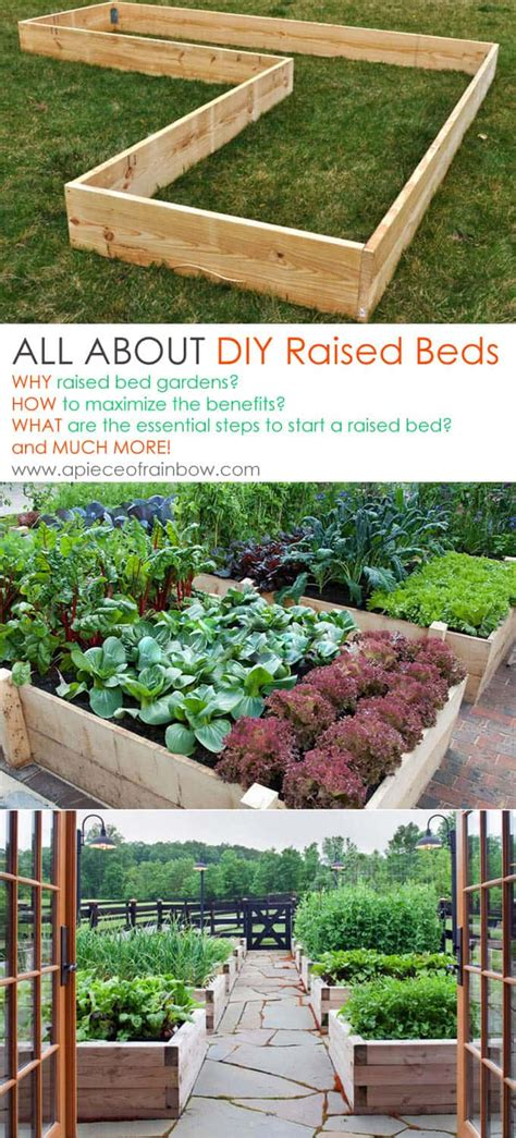 raised bed gardening a diy guide to raised bed gardening books 5 secrets to grow tomatoes 100 lbs in 20 square a
