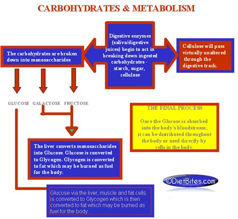 carbohydrates table conversion chart a1c to glucose diabetes inc
