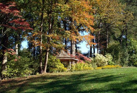 Brookside Gardens Maryland by Silver Md Fall Foliage At Brookside Gardens