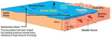 a diagram of a tsunami tsunami tragedy creation