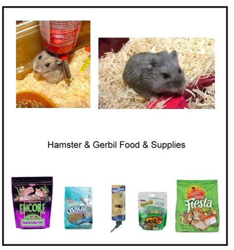 animal supply house animal house pet supply services