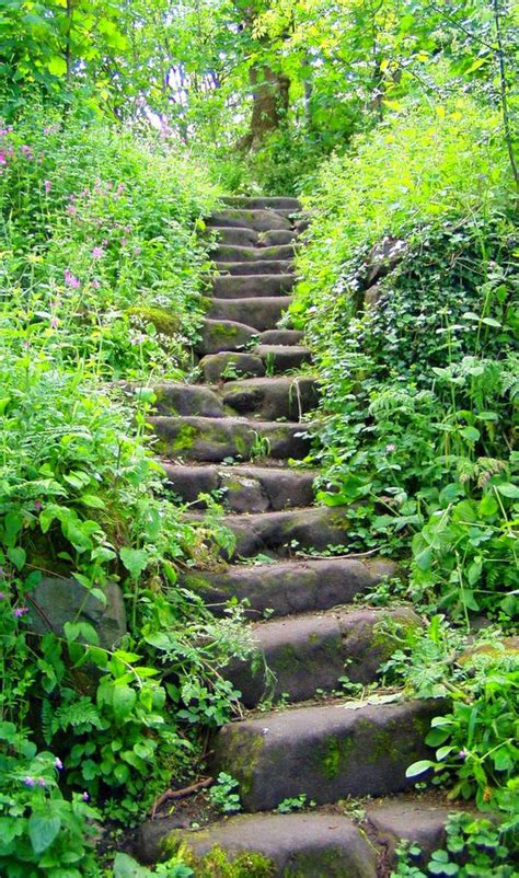 Rock Garden Steps 25 Best Ideas About Rock Steps On Pinterest Steps River Rock Path And Garden Steps