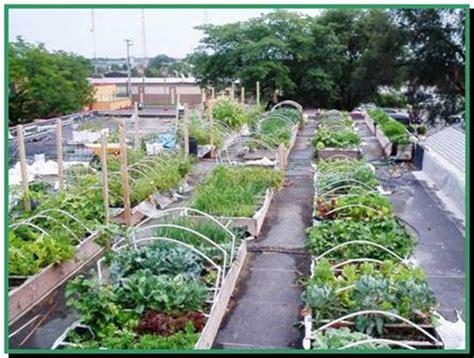 How To Create A Rooftop Garden Interior Design Rooftop Vegetable Gardens