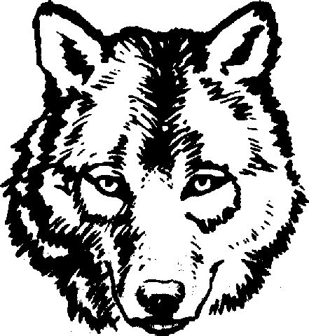 adult wolf face coloring pages paper pinterest wolf