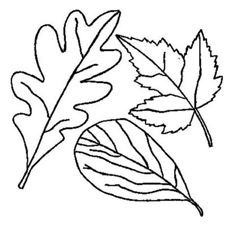 free autumn leaves for kids coloring pages