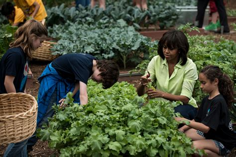 michelle obama healthy eating michelle obama promotes healthy eating with a grass roots